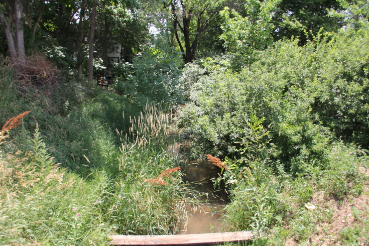 "The small waterway known as ""City Ditch"" runs at a forest-like area behind a house on South Huron Street near West Princeton Avenue in Englewood. The waterway goes underground here, as it does at other points in its path that winds from Big Dry Creek at the Belleview Children's Farm."
