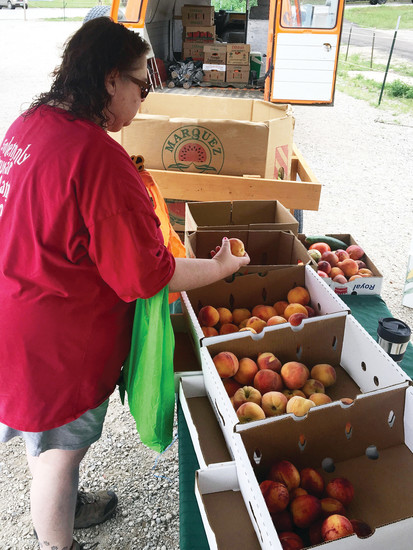 Dana Beckman of Elizabeth gathers a bag full of Palisade peaches at the Fruit Shak stand during the July 29 Town of Elizabeth Farmer's Market.