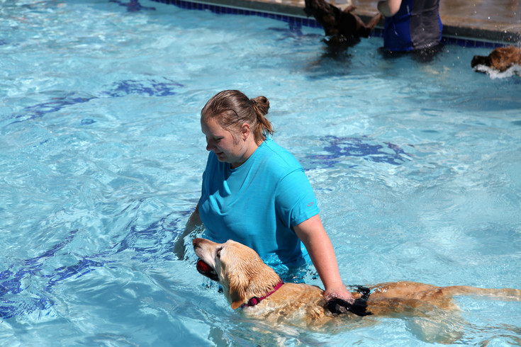 Stephanie Olofson swims with her yellow lab, Abby at the Lake Arbor dog swim.