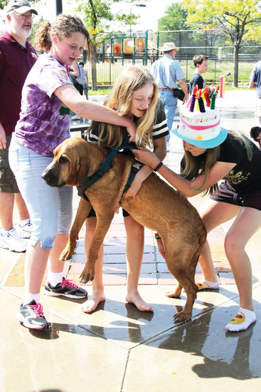 Some dogs needed a little encouragement getting into the water at the Pooch Plunge in Castle Rock. Here Gabby Goodwin, Sienna Clark and Maggie Ullom offer their bloodhound, Tessa, a lift into the pool.