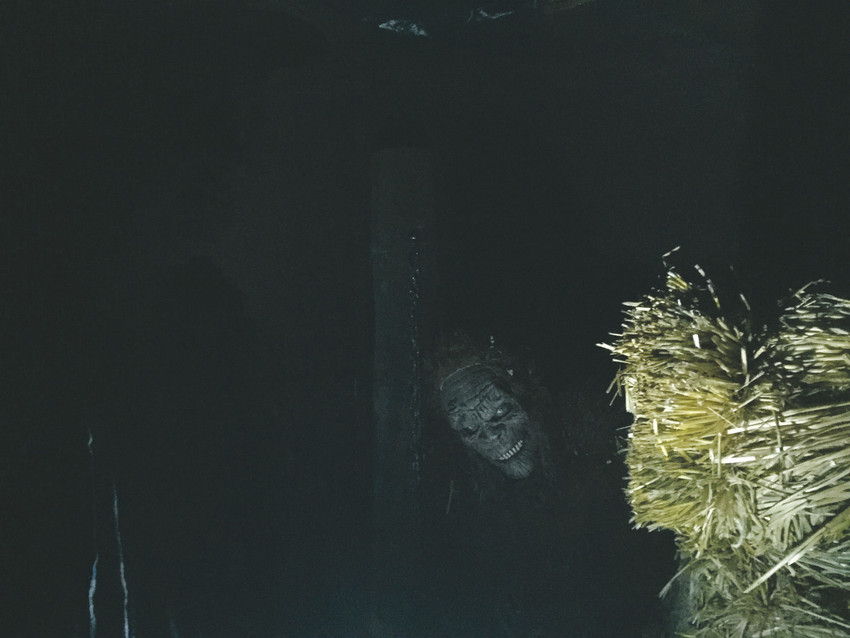 Some of the scary features visitors will find at Parker's Reapers Hollow.