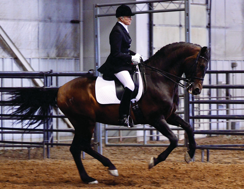 Carbonnel showing with her Andalusian stallion, Esteban B.