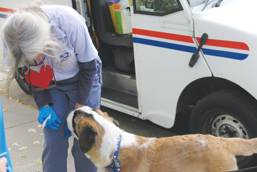 Mail carrier Ellen Nelson says hello to a young Saint Bernard dog Oct. 27 at a surprise celebration marking the end of her career. Nelson delivered mail to the Homestead Farms neighborhood for 14 years.