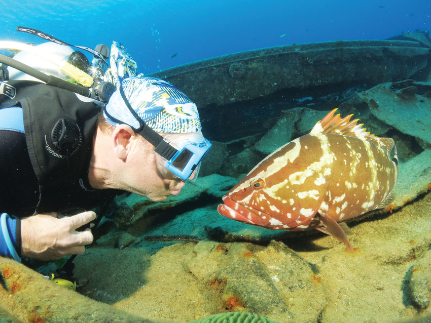 Scuba divers from Greenwood Village's One World Dive and Travel meet some of the ocean's denizens.