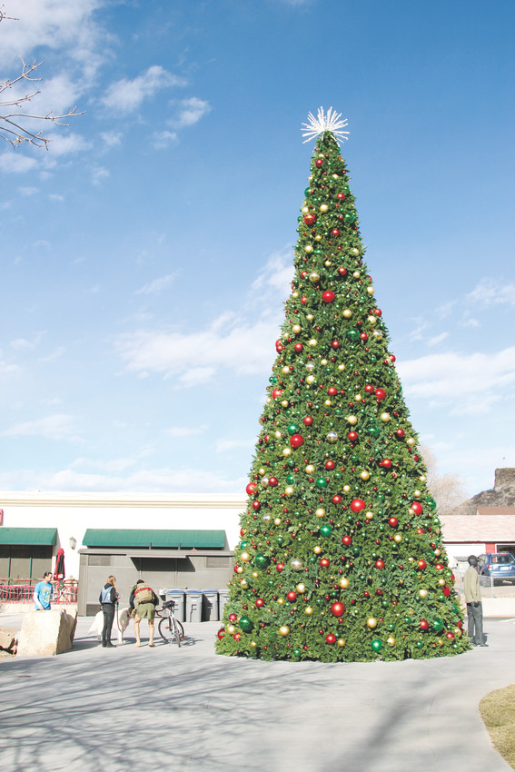 The Festival Park Christmas Tree towers over visitors Dec. 1.