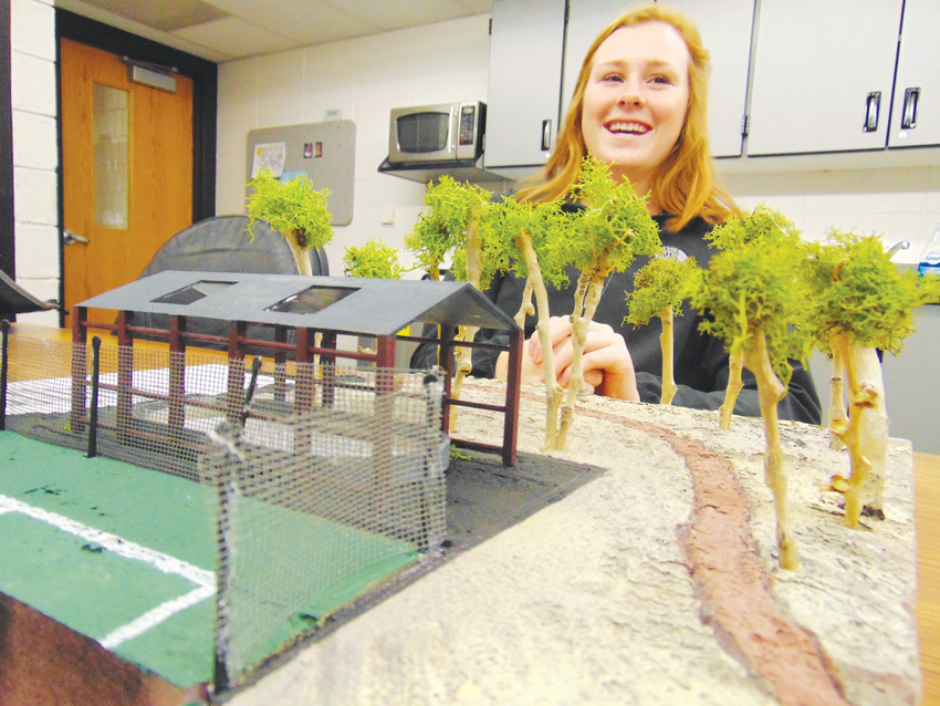 "Heritage High School senior Alexa Balkema gives her ""elevator pitch"" for the hockey rink she and classmate Sarah Ervin designed. The pair 3D printed a model of the rink and built a to-scale diorama of where they think it should go on school grounds."