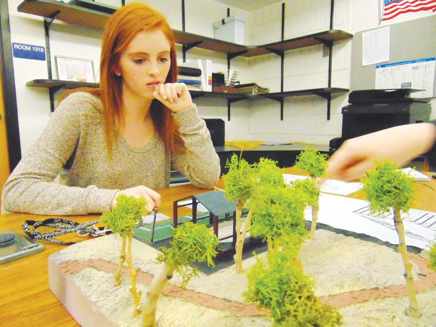 Heritage High School senior Sarah Ervin surveys her work on a proposed hockey rink she designed with classmate Alexa Balkema.