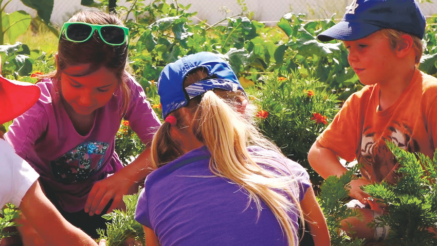 "Danny Ledonne's ""Growing VEGI"" takes a look at the San Luis Valley's Valley Educational Gardens Initiative. VEGI works with schools and community programs to address the root causes of hunger and food insecurity by cultivating a relationship with nourishing foods from the soil up. The film will be shown at the Colorado Environmental Film Festival during the 4 to 6 p.m. session on Feb. 23."