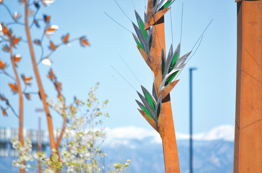 "A branch from artist C.J. Rench's ""Native Grasses"" at Webster Lake Promenade, off of 120th Avenue and Grant. The sculpture consists of four different metal and glass representations of native Colorado grass at four locations surrounding the center of the shopping area's parking lot."