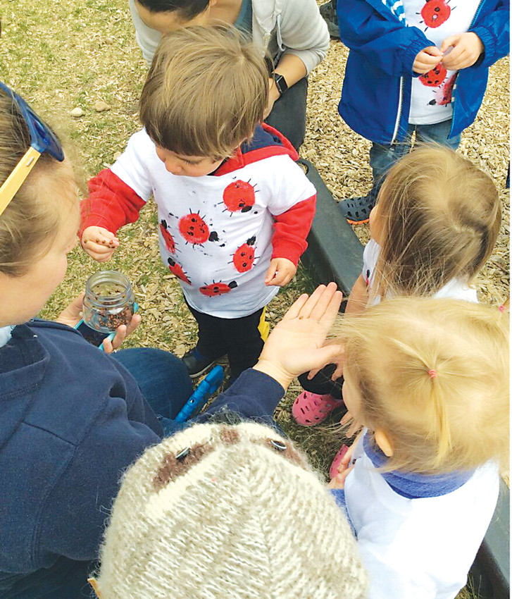 Students from Merryhill Preschool in Lone Tree released thousands of lady bugs April 20 in celebration of Earth Day.