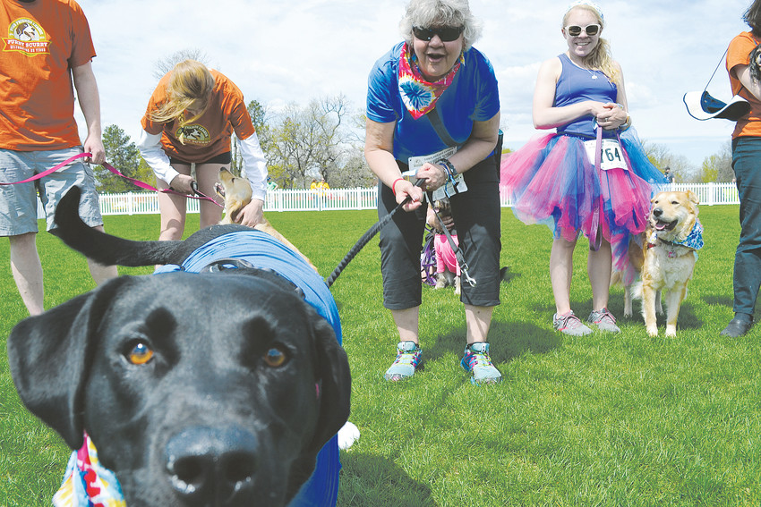 Pets and their owners enjoyed costume contests and more at the Furry Scurry.