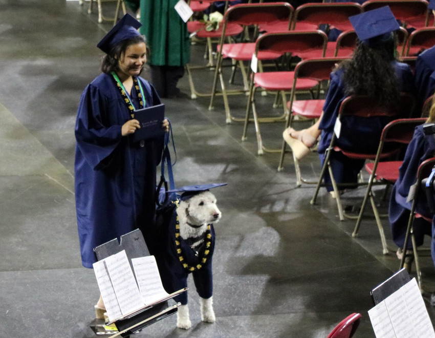 A four-legged friend accompanies a graduate of ThunderRidge High School at the May 26 commencement ceremony. The event was held at the University of Denver Magness Arena, 2250 E Jewell Ave.