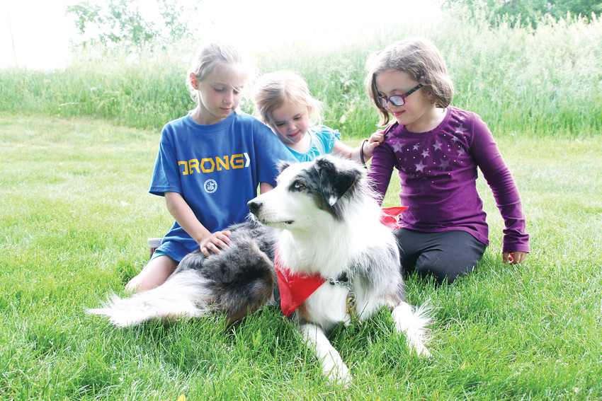 M'kaela Conley, 9, and her sisters Elliana, 3, and Alyza, 7, gather around Nyqo, their family companion dog who they adopted through the Stink Bug Project.