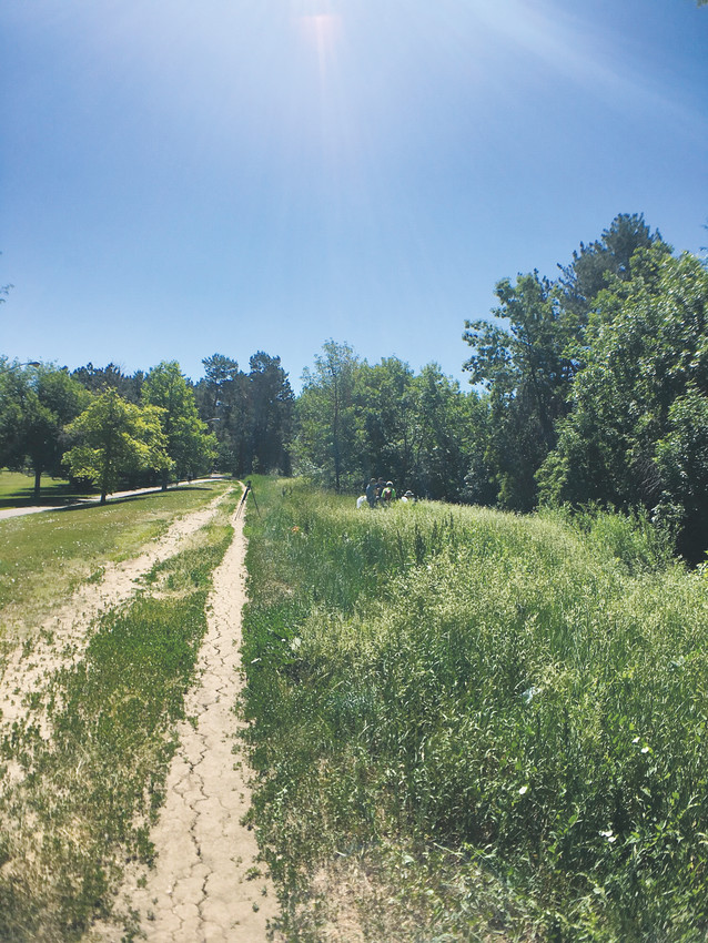 The High Line Canal Conservancy is hosting several BioBlitz events this summer to help count animal and insect species around the canal trails. The first was at Mamie D. Eisenhower Park in University Hills.
