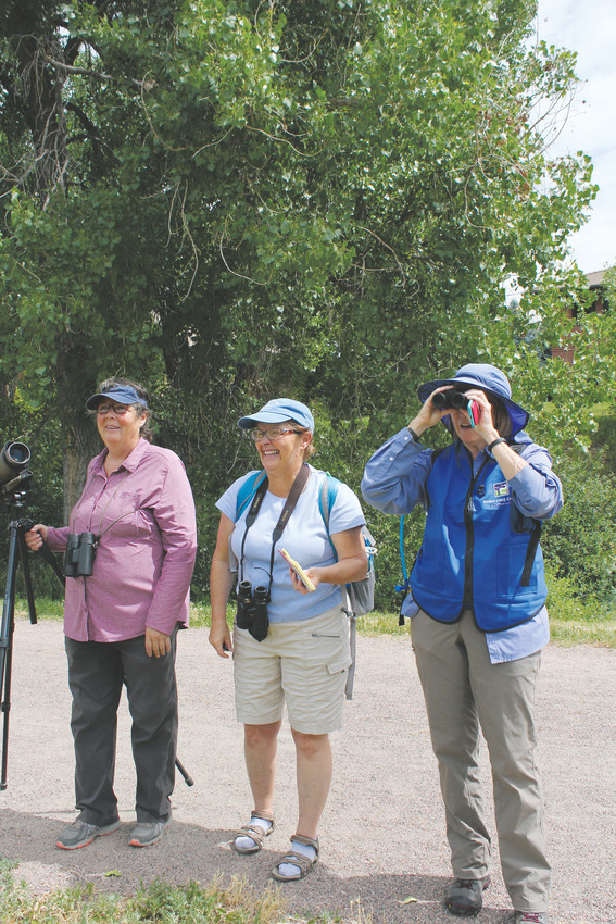 Betty Glass (left), Carol Hayes and Carol Smith (right) bird watch during a BioBlitz event with the High Line Canal Conservancy.