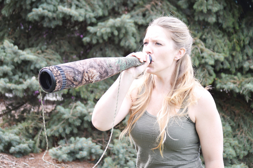 Using her voice and a bugle to amplify it, world elk calling champion Hannah Holiday of Northglenn can imitate everything from a male elk looking for a fight to a herd of cow elk talking amongst themselves. Using the right call depends on the circumstances, she said.
