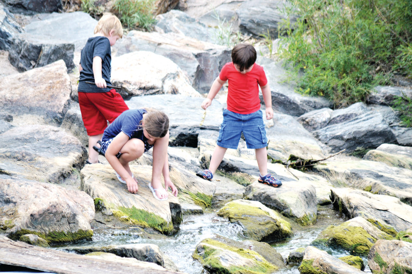 Addi Farbo, her brother Zack behind her and friend Ben Hill investigate the Big Dry Creek July 4 in Westminster, just north of Westminster's City Park. The three were taking turns floating sticks and leaves down the stream.