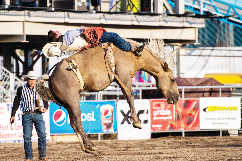 Bareback rider Bill Tutor of Huntsville, Texas, hangs on for a wild ride on Aug. 3.