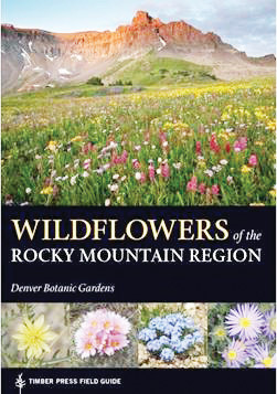 A new book on wildflowers of the Northern, Middle and Southern Rockies, with clear photographs and identification information is available now. DBG botanists are the authors of this three-year project.