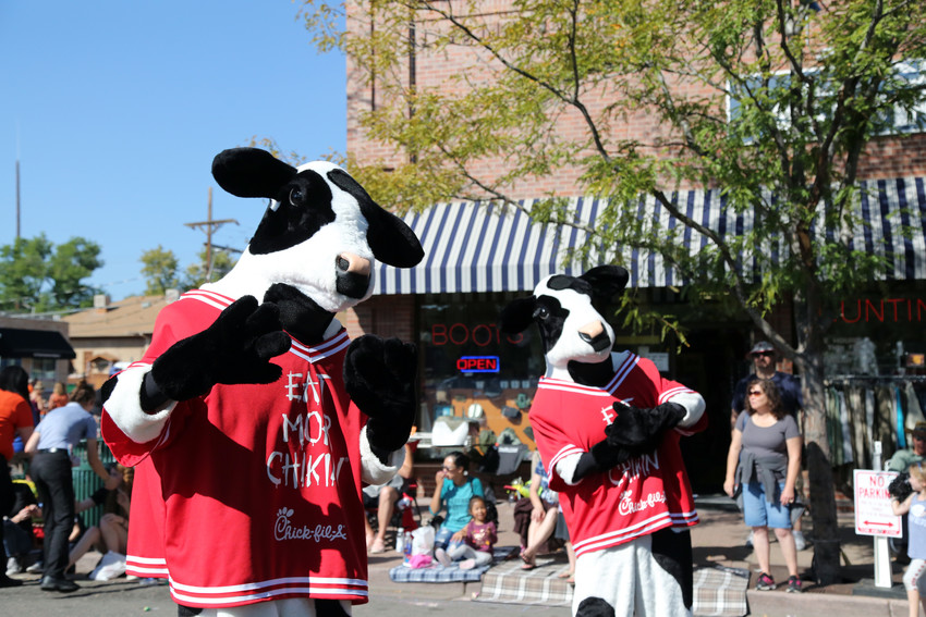 The Chick-fil-a cows also made an appearance in Olde Town.