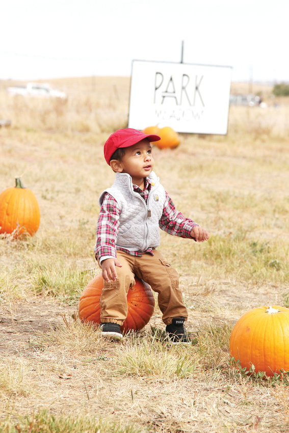 Matthew Switzine looks to his father, Sebastian, while looking through the pumpkin patch at Sweiger Ranch on Oct. 6.