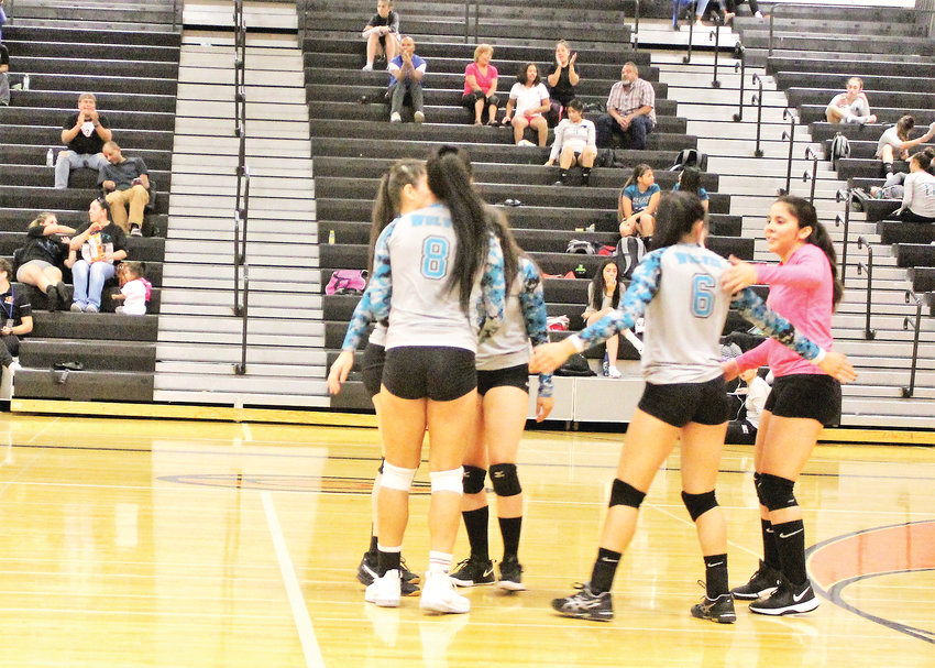 Westminster volleyball celebrates a point on the road against Gateway Oct. 3.