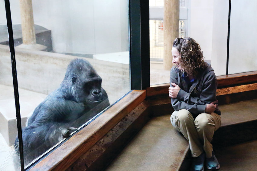 Zookeeper Michelle Valois said she loves the interactiion she can have with the apes at the Denver Zoo.