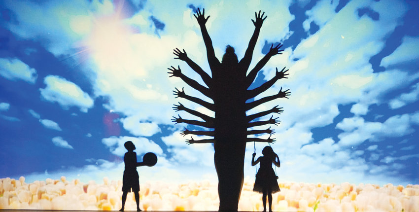 The Silhouettes use their bodies and shadows to create a tree during one of their performances.