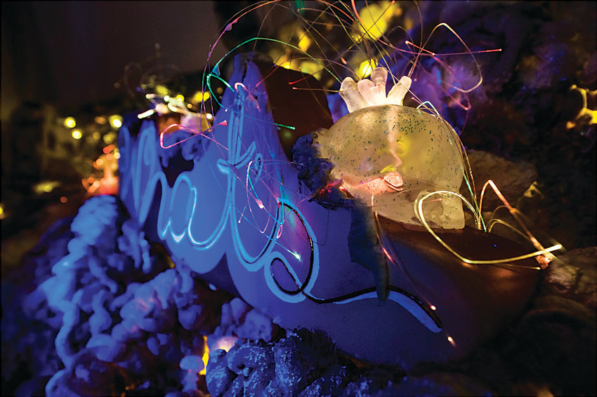 "Fiber optic lights in ""Natura Obscura,"" an Immersive exhibit opened at Museum of Outdoor Arts on Jan. 11."
