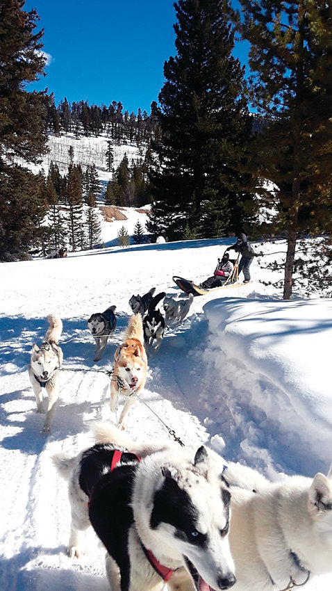 The outdoor cordinator for Castle Rock said people ranging in age and skill level are welcome to participate in the town's outdoor program excursions. The outings have included dog sledding, snowshoeing and ice fishing.