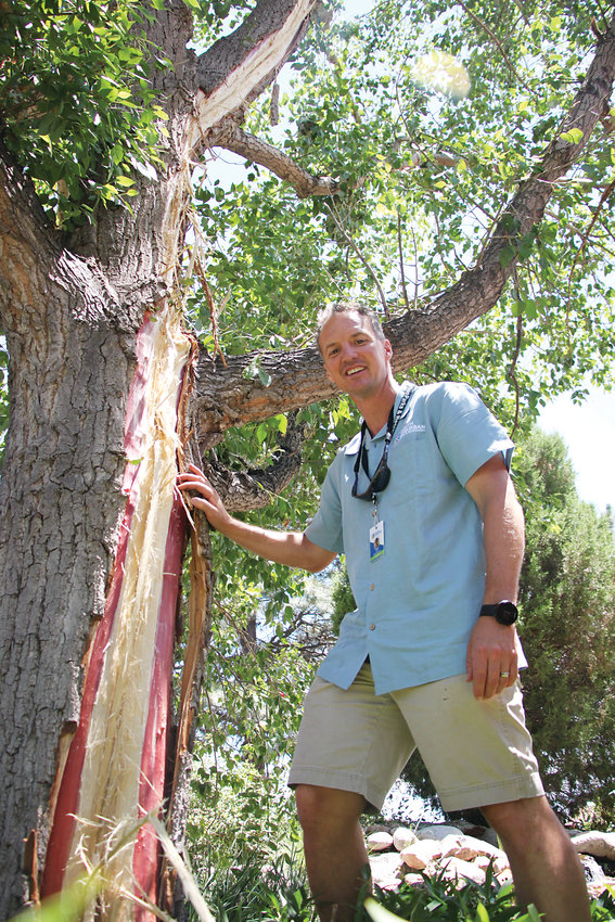 South Platte Park manager Skot Latona stands beside a cottonwood that was struck by lightning during a storm on July 1. Chunks of the tree busted windows at Carson Nature Center and fried parts of the building's electrical system.