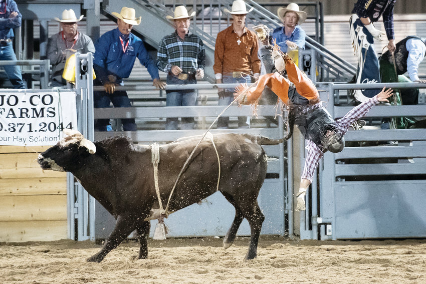 Bull rider Cyler Doremus, of Fort Collins, gets upended at last year's Douglas County Fair and Rodeo.