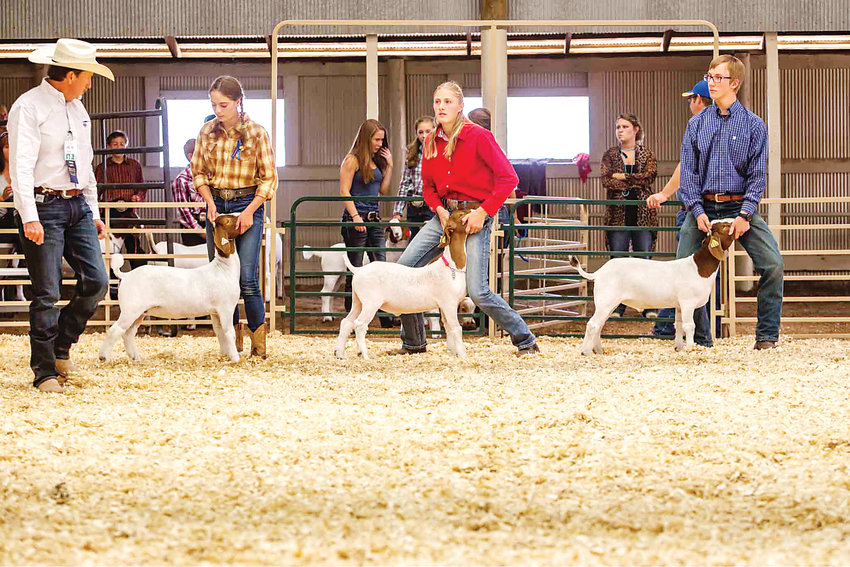 This year is the 60th anniversary of the Jr. Livestock Sale in Douglas County.