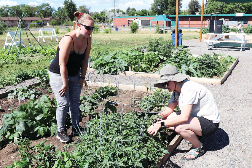 MacKenzie Keller, right, joins a fellow gardener in her plot to give her tips on trimming her vegetable plants.