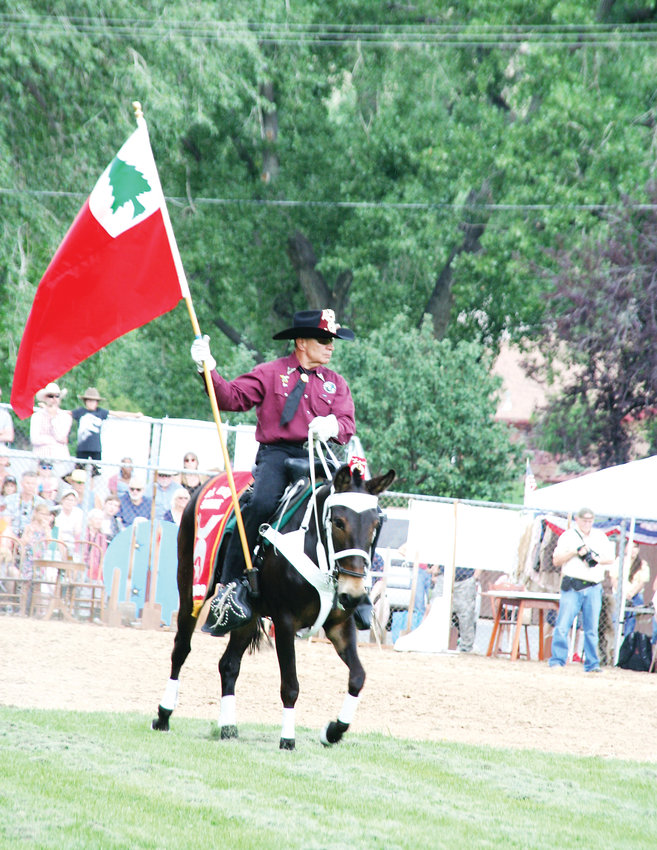 A mounted rider carries a flag during the Al Kaly Mule Train's presentation during Monarch Productions' Cody's Wild West during this year's Buffalo Bill Days celebration.