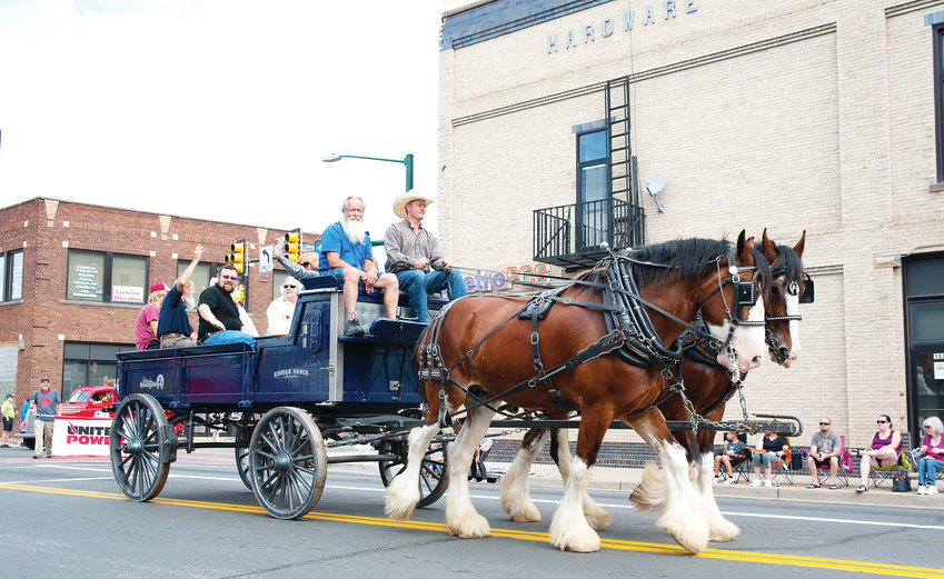 A pair of Clydesdales pull a float July 27 during the annual Adams County Fair parade in downtown Brighton.