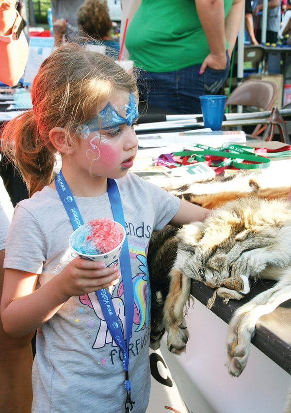 Mia Bruning, 4, of Golden pets a coyote pelt on Aug. 6 at the Golden Police's National Night Out event in Parfet Park. The display was put on by Golden Police's code enforcement and animal management department.
