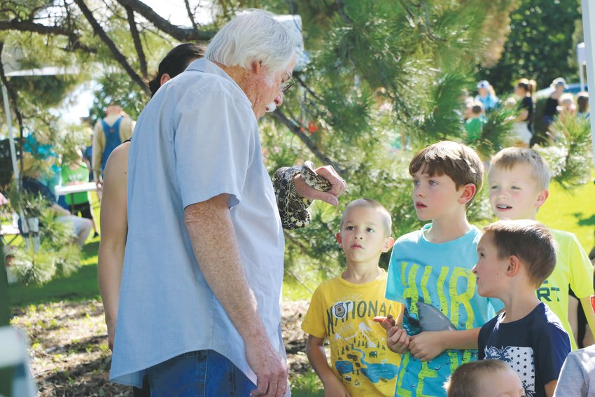 A volunteer with Nature's Educators holds a bull snake while children take a look during Highlands Ranch Pioneer Days. This type of snake, common to Colorado, sometimes disguises itself as a rattlesnake, said a representative from the nonprofit.