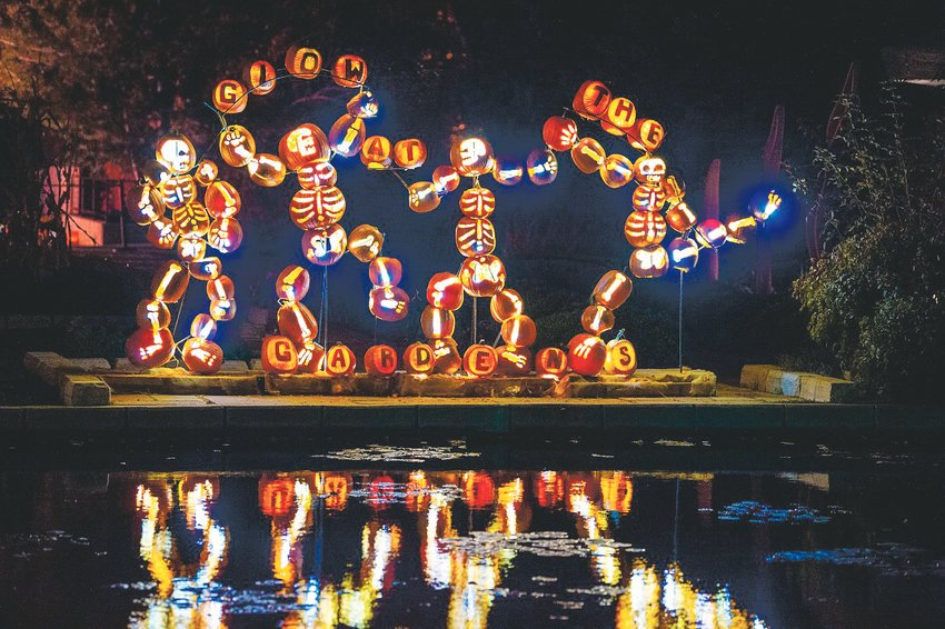 Denver Botanic Gardens will be lit up with hundreds of carved pumpkins, crafted by professional carvers.