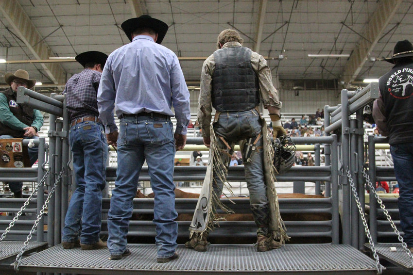 Cowboys stand over a bull before its release into the arena during the Buckers Unlimited finals.