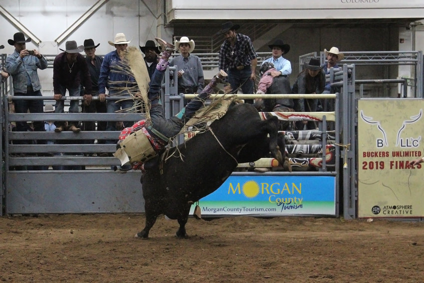 A competitor flies through the air as he's bucked off his bull.