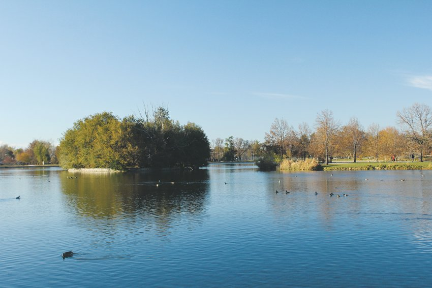 Water quality in the lakes at Denver parks can impact the plant and animal life living in them. The Denver Department of Public Health and Environment tests the waters regularly to nutrient levels and bacteria.