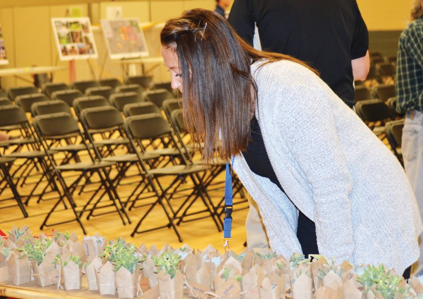 Paula Worley, a teacher at Westminster's Crown Point Academy, looks over the free succulent plants given away by developer of the proposed Uplands Project Nov. 13 in the Crown Pointe Academy gymnasium.