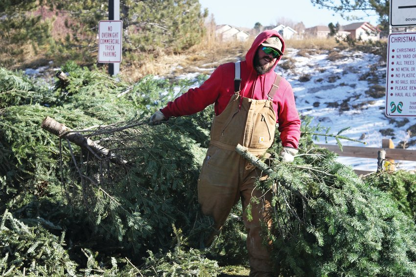 Residents can get permits to cut a live tree, then recycle it with their local county or municipal government programs.
