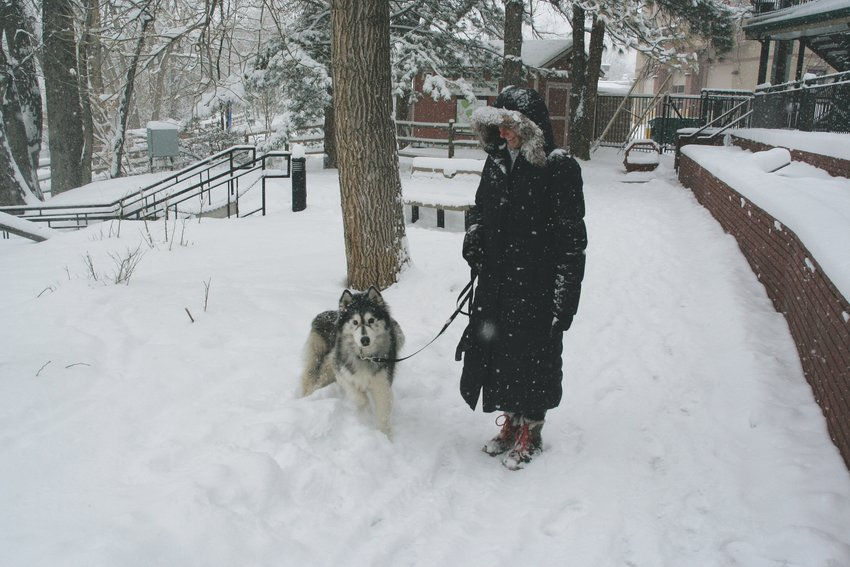 Jessica England walks her dog, Charlie, along the Clear Creek trail during the snowstorm on Feb. 7.
