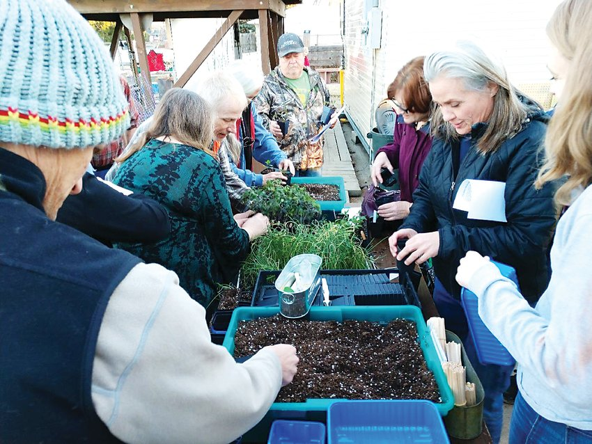 "The first class offered this year by the Arvada Community Garden is ""Starting Plants from Seed."" Participants will learn how to start onions, tomatoes, peppers, cole crops and flowers from seed."