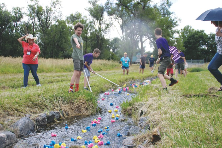 Duck herders prod along errant ducks during Western Welcome Week's Duck Race at Sterne Park on Aug. 10, 2019. More than 300 racers competed for top honors and prizes.