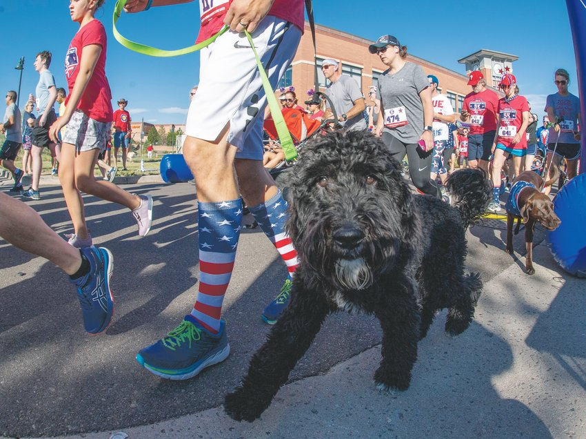 Minutes after the official start, four legged runners were allowed to begin the Highlands Ranch Independence Day 5k Race in 2019. This year's race will be staged virtually.