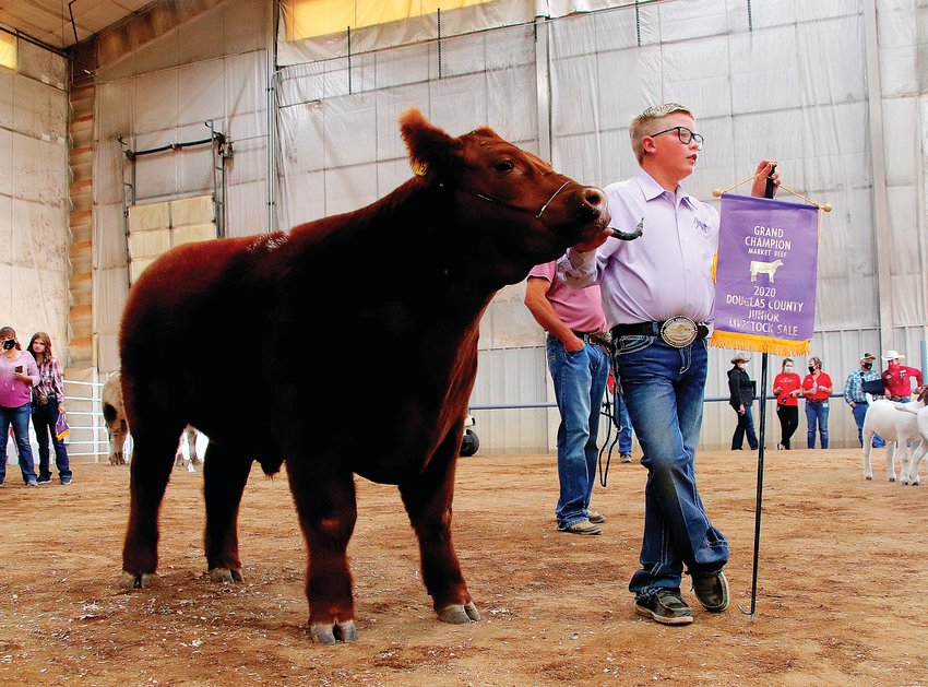 James Mullins, 12, with his steer, the grand champion of the junior livestock sale for market beef. The 1,200-pound steer sold for $18,000 in the auction.
