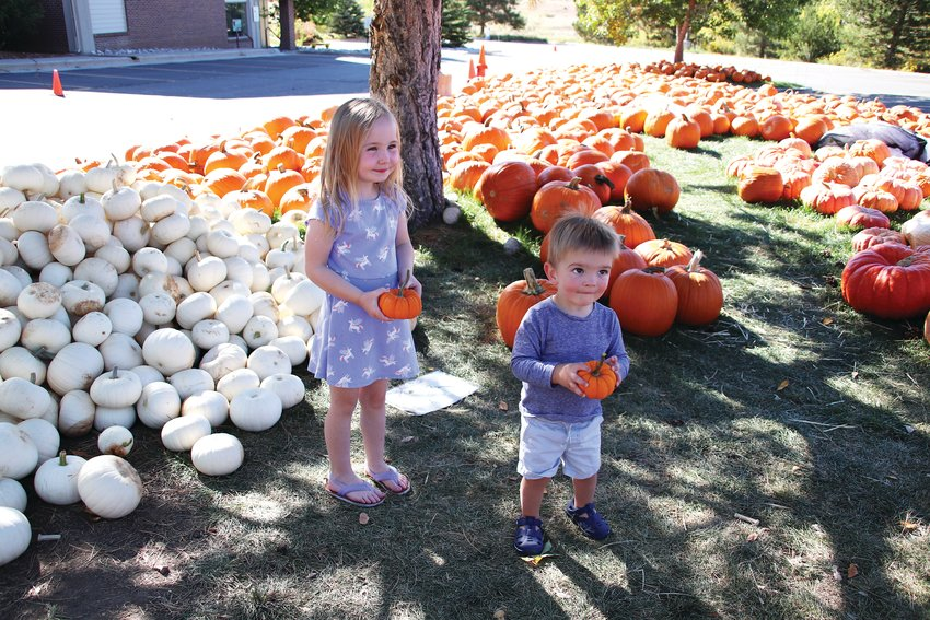 Willa Hiatt, 4, and her brother Elliot, 1, pose while their mother takes a photo at St. Luke's pumpkin patch in Highlands Ranch Sept. 29.